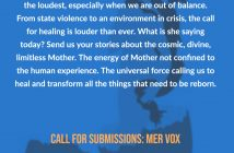 MER VOX Call for Submissions