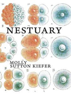 nestuary