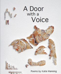 a-door-with-a-voice-cover